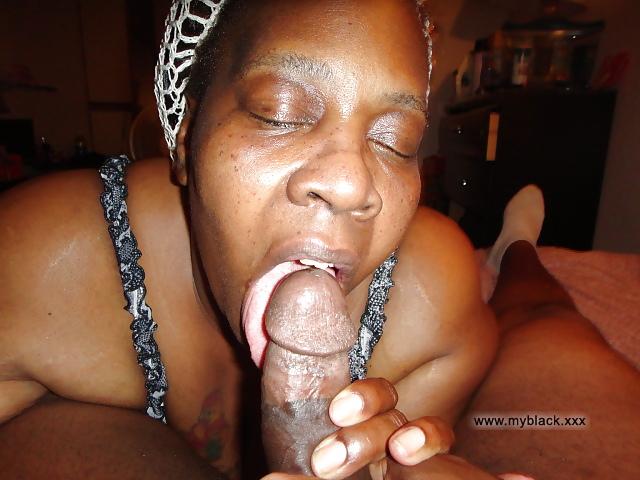 Bbw Latina Sucking Black Dick