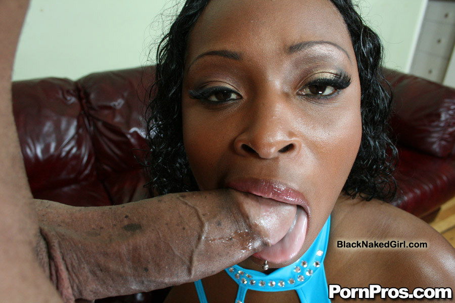 Ebony Bbw Blowjob White Dick
